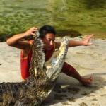 Ferme aux crocodiles à Samutprakarn