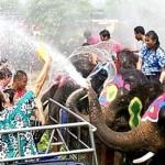 Songkran Si Maha Racha Festival & Kong Khao Tradition