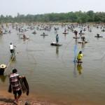 Concours de pêche en Thailande