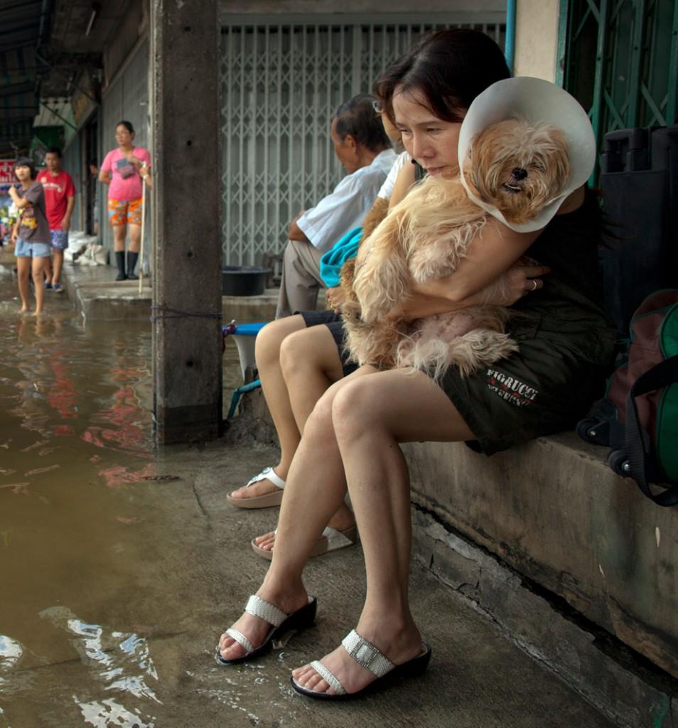 Une femme thaie accompagnée de son chien alors que sa rue vient d'être inondé