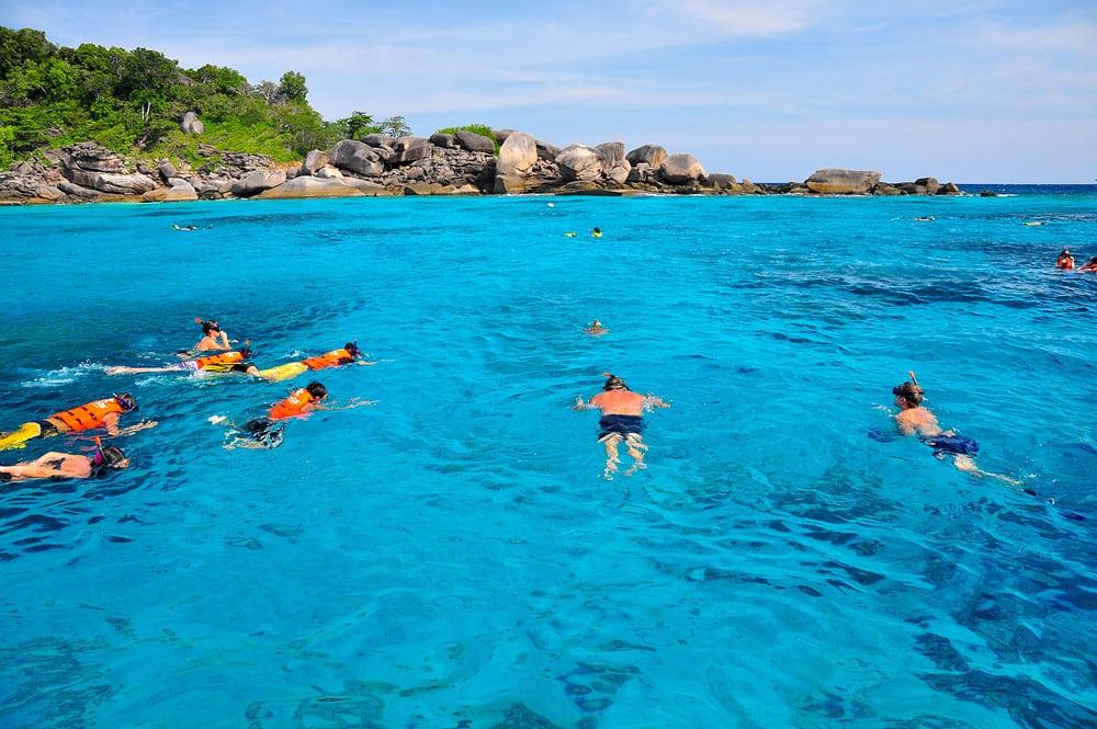 Une tortue des mers des îles Similan