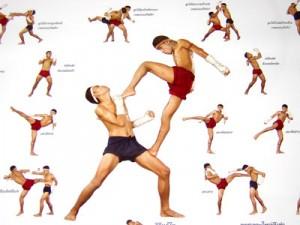 Techniques de Muay Thaï
