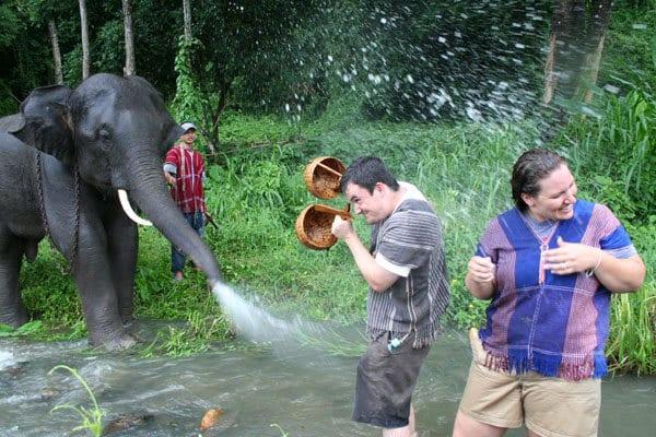 Patara Elephant Farm à Chiang Mai