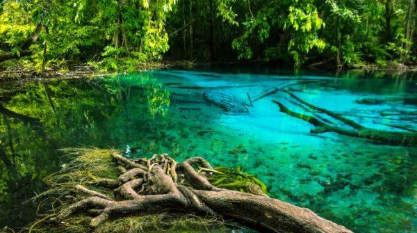 la nature en Thailand
